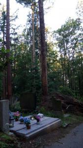 45m necropolis